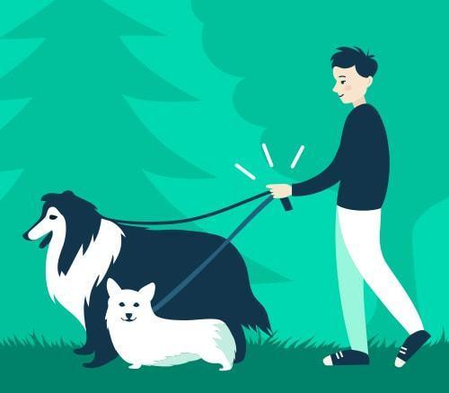 Petwalking class=